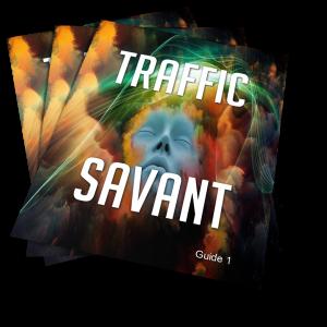 Traffic Savant image