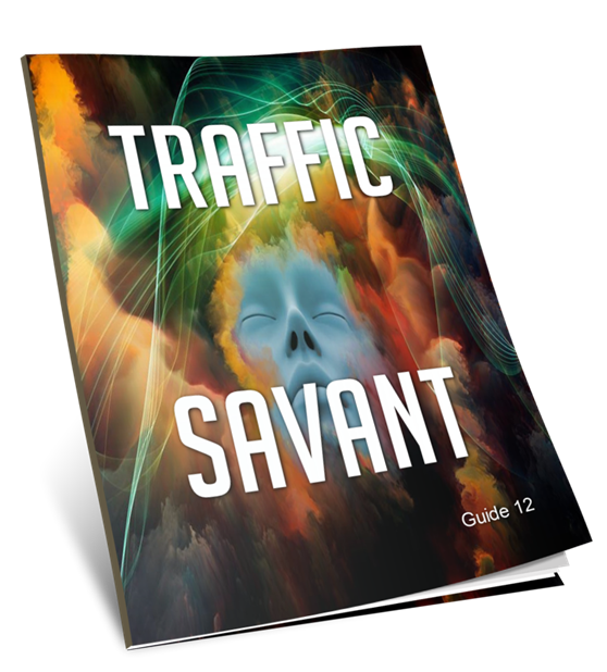 Traffic Savant Guide 12