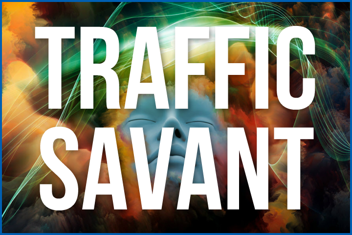 Traffic Savant product thumb